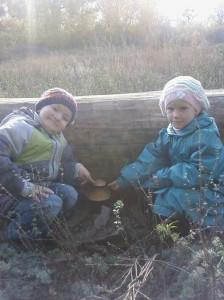 Чувственное познание природного мира дошкольниками