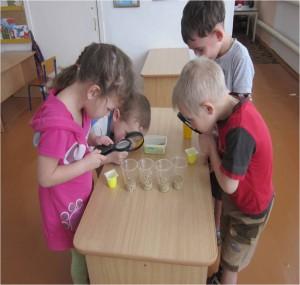 Детское экспериментирование в ДОУ