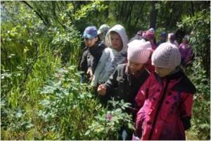 Экологическое развитие детей